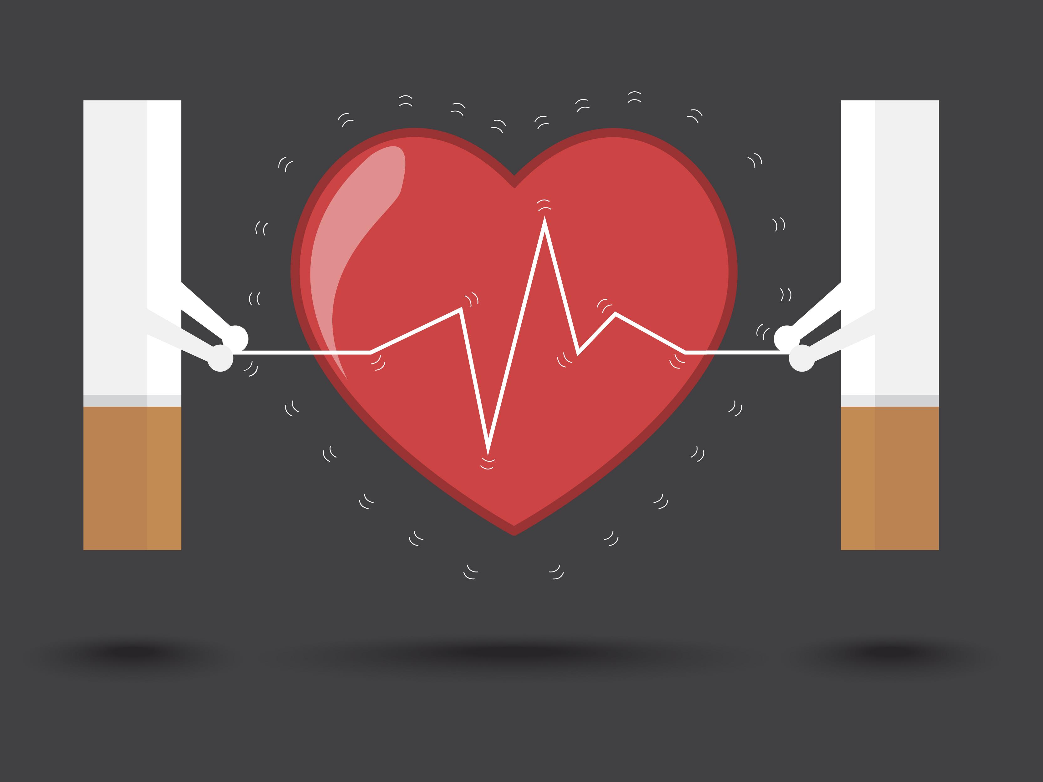 Le tabac et les maladies cardiaques | Tabacstop